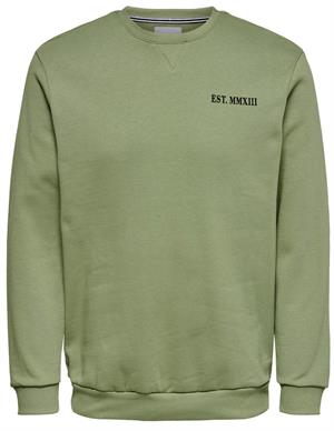 ONLY & SONS ONSBRIAN CREW NECK. 22014792